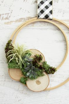 DIY Wooden Embroidery Hoop Air Plant/Succulent Wreath