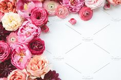 Pink Flower Styled Stock Photo by Anna Delores on @creativemarket