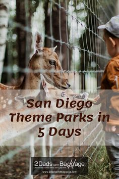 San Diego Theme Parks in 5 Days - Family Travel Tips