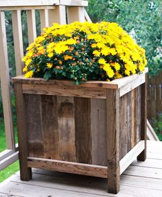 Wood Plant Boxes - Create them from old barn wood or something similar. This looks like an excellent back porch idea! :)