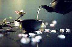 La Dieta del Té Rojo | Cuidar de tu belleza es facilisimo.com