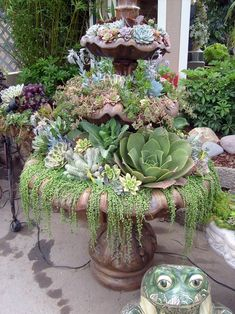 Top Diy Water Fountain Ideas And Projects - Diy Garden Decor İdeas Succulents In Containers, Cacti And Succulents, Planting Succulents, Planting Flowers, Succulent Arrangements, Succulent Gardening, Garden Plants, Organic Gardening, Garden Water