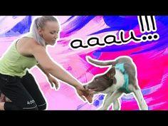 Youtube, Animals, Instagram, Animales, Animaux, Animal, Animais, Youtubers, Youtube Movies