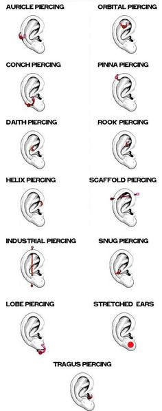 Whether it's a #diamond stud, dangly multi-piece, or a hoop #earring, the lobe is the most conservative #piercing for women.