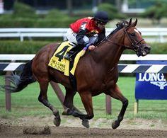 A. P. Indian. Alfred G. Vanderbilt Hcp.  Beautiful horse... future Eclipse champion sprinter?
