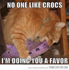 End of the Crocs