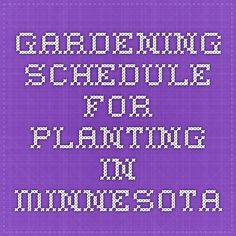 gardening schedule for planting in minnesota