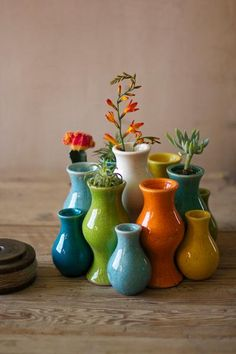Set of 13 multi-colored ceramic vases atwestend.com.  I'm thinking about getting these to put on the dining room table.  How hard would it be to grow little succulents and cacti in them?