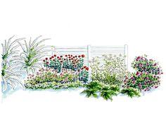 Paksulumisille paikoille voi suositella sitkeäversoisia pensaita, matalia havuja ja kestäviä perennoja. Poimi vinkit Viherpihan istutussuunnitelmasta!