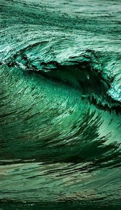 I 40 shades of green looks like bark but it is the ocean's waves Dark Green Aesthetic, Nature Aesthetic, Aesthetic Colors, Go Green, Green Colors, Colours, Green Lawn, Sea Green Color, Green Ocean