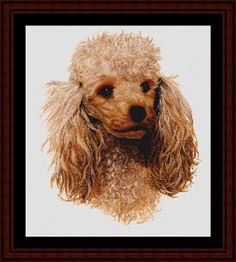 Honey Poodle - Cross Stitch Collectibles fine art counted cross stitch pattern