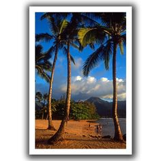 'Hanalei Bay Palms' by Kathy Yates Canvas Poster