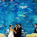 Cheap+Wedding+Ideas+that+Don