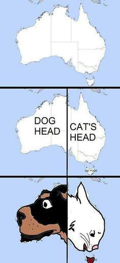 Australia .... perro/gato