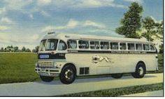 Vintage Greyhound Bus Postcard.