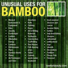 Unusual uses for Bamboo