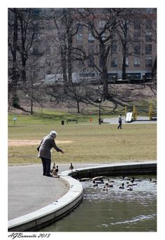 Feeding the Birds, Morningside Park, NYC Copyright: Andre Bonavita Oh The Places You'll Go, Places To Visit, City That Never Sleeps, Dream City, Living In New York, Best Cities, Cityscapes, City Life, Central Park
