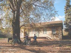 From our last #mountain #bike #tour at #Tatoi ! #cycling #biking #nature #exploring #Greece