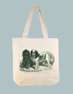 Beautiful Vintage King Cavalier Spaniel Dogs Canvas by Whimsybags, $8.00