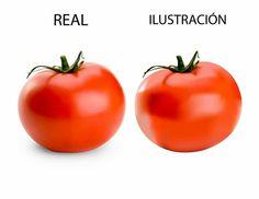 Ilustración digital/ digital illustration