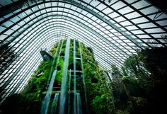 London, Remastered    Singapore Remix I was looking through some older photos and I am often amazed at how strange some places are… take this indoor waterfall in Singapore for example! Daily Photo – London, Remastered    http://www.stuckincustoms.com/2017/01/07/london-remastered/