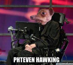 Phteven is back!