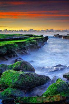 Sunrise at Mossy Beach - Sydney, Australia