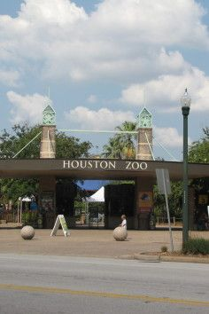 The Houston Zoo in Texas is the seventh most visited zoo in the United States.