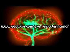 SUPER MEMORIA SUPER CONCENTRACION MEMORIA FOTOGRAFICA SUPER APRENDIZAJE - EL PODER INTERIOR - YouTube