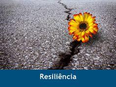 Resiliência: a arte de enfrentar os problemas com otimismo!