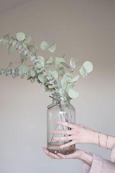 Eucalyptus |badkamer