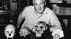 Esta familia se dedicó únicamente 90 años a descubrimientos a antropológicos. Antropología: Ciencia que tiene por objeto el estudio del hombre
