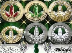 HERBALIFE PINS- What is YOUR DREAM? Which level do YOU want to reach?  DREAM BIG!  TEAMWORK makes the DREAM WORK!  HERBALIFE