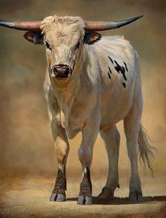 Gado Vaca boi - Bull of Pearl by Teresa Elliott Artist Amazing Paintings, Realistic Paintings, Longhorn Cattle, Longhorn Steer, Cow Painting, Cow Art, Oil Painters, Mundo Animal, Jackson Pollock