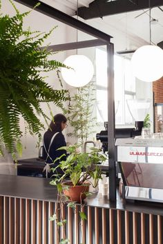 Affable Melbourne speciality coffee and tea emporium Assembly opens up its second location...