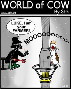 Images of funny cows | Funny cow cartoon - Star Wars