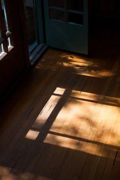 filtered light on wood floors