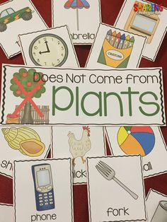 Plants Unit your young learners will love. And SO WILL YOU