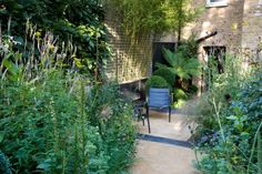 The black garden of designer Chris Moss in Stockwell, south London. Photography by Marcus Harpur.