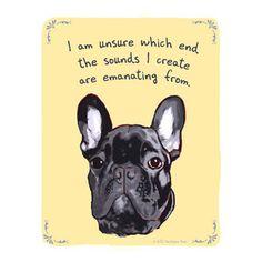 Funny dog...
