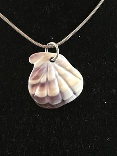 Scallop Wampum Shell Pendant Necklace by CarolesDesign on Etsy