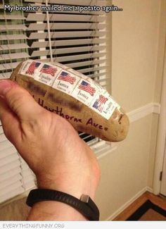"""So... my brother mailed me a potato again."" He must have seen that pin about all the things you can mail by just putting stamps on them."