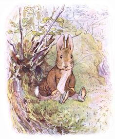 Illustration from the classic children's story The Tale Of Benjamin Bunny, by Beatrix Potter Beatrix Potter Illustrations, Vintage Illustrations, Alfabeto Animal, Beatrice Potter, Peter Rabbit And Friends, Benjamin Bunny, Animals Images, Children's Book Illustration, Woodland Illustration