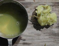 a batch of wisteria leaf dye and fabric