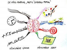 Mind-mapping : apprendre à organiser ses idées - Feminin Bio