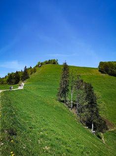 S Bahn, Der Bus, Switzerland, Golf Courses, Hiking, Country Roads, World, Travel, Live