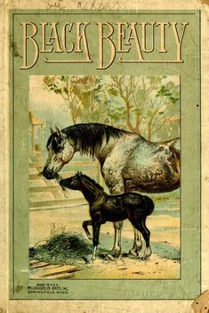 """""""Black Beauty: The Autobiography Of A Horse"""" By Anna Sewell (1870) McLoughlin Brothers Publishing"""