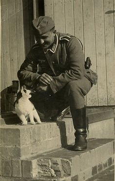 German soldier with a kitty cat