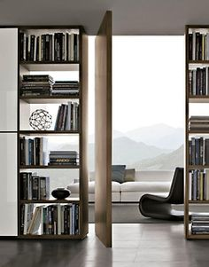 Home Library - Living Room - Entryway Ideas - Pivot Doors - Modern Design
