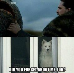 Did you forget about me Jon? Where's Ghost?! Game of Thrones.